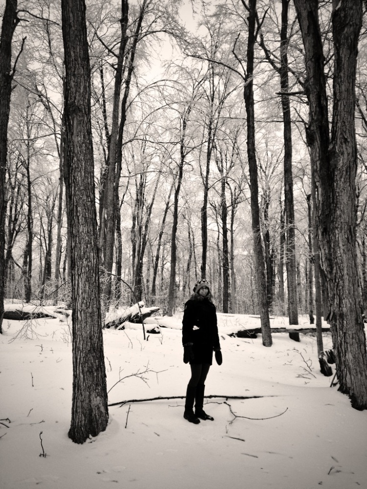 Morgan out for a stroll in the sugar bush.  We will start tapping in Spring of 2015.