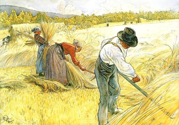 Carl-Larsson-Harvesting-The-Rye