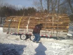 Cedar goes to market