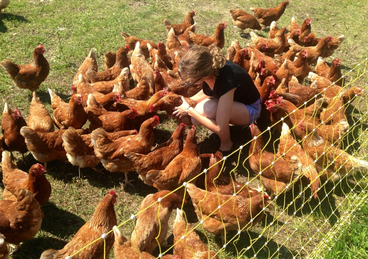 Morgan likes to chill with her birds.  Real hen party!