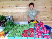 Hiram at the farmstand