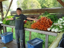 Would you buys carrots from this man?