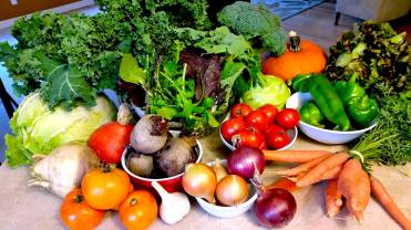 veggies_wk 16