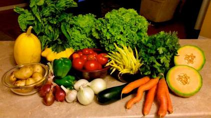 veggies_wk11
