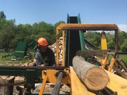 Hiram on the wood processor