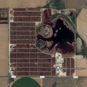 A texas feedlot from space I randomly pulled off of Google